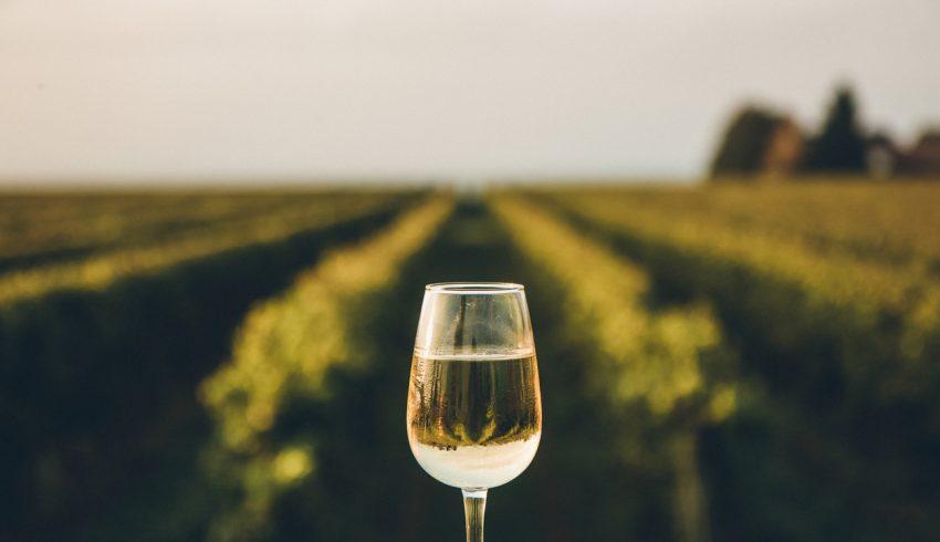arnaque au vin et spiritueux