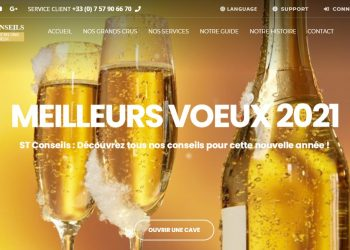 St-conseils.com : le site qui usurpe l'identité de St Conseils