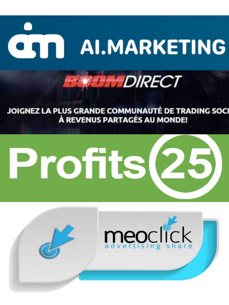 Profit25, Meoclick ou encore Boomdirect AI.Marketing